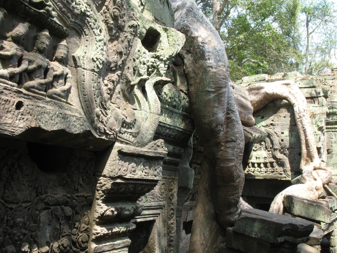 Ta Prohm - detail of the ruins melting into the jungle