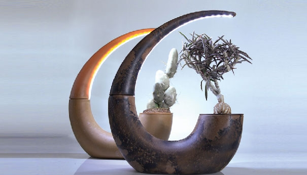 Liquid-wood-planter-with-lamp